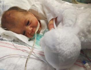 Lily, 1 week old