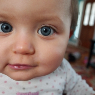 Avery , 1 year