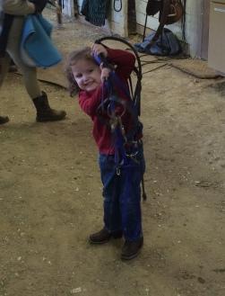 Lily tacking